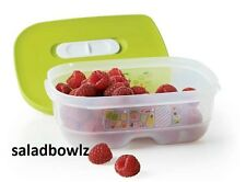TUPPERWARE New FRIDGESMART SMALL CONTAINER 3 cups/800 mL in Margarita fREEsHIP!