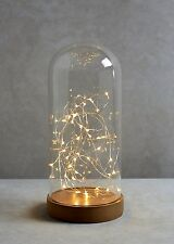 Large LED Glass Bell Jar Dome with String Light Table Lamp Christmas Decoration