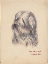 1940's autograph album page beautiful picture of Old English Sheep Dog F Adams