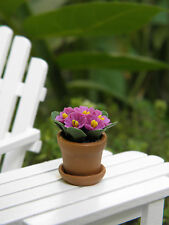 Miniature Dollhouse FAIRY GARDEN ~ Small Purple African Violet in Pot ~ NEW
