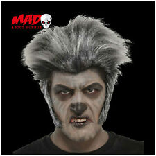 SCARY! Grey Werewolf Wig for Halloween Horror Film Wolf/Zombie Mens Costume/Mask