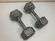 Set Of 2 20lb Pound Dumbbells Dumb Bells Bar Hex Cast Iron Weights Silver 40lbs