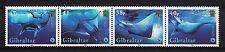 102564/ Gibraltar 2006 - ZD Mi 1150/3 - WWF / Teufelsrochen - **