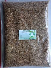 WHEATGRASS SEEDS -NON-GMO / 5 LB (Approximately 65,000 seeds)