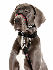 Halti OptiFit Headcollar for Dogs L Size Guaranteed To Stop Pulling Optimum Fit