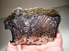GREAT DEAL! AMAZING CRYSTALS! SENSATIONAL SEYMCHAN PALLASITE METEORITE 280 GMS