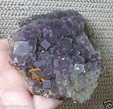 530g Cubic Purple Fluorite specimen on matrix China New Age Healing Stone ~pa232