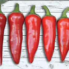 Red Fresno Hot Pepper 40 organic Seeds pepper FREE SHIPPING