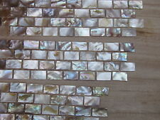M O P Freahwater Mosaic tiles border 30x6cm strip Natural colour 15*25mm