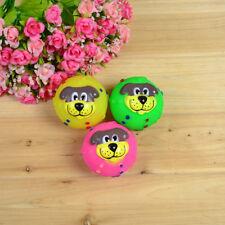 כדור לכלב - כדור מצפצף