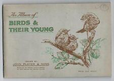 1937 John Players & Sons Birds & Their Young Tobacco Cards Near Set In Album