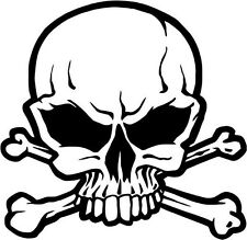 "Pirate Jolly Roger Skull Decal Sticker Car Truck Window- 6"" Wide White Color"