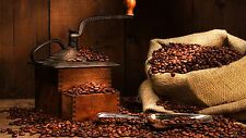 5 lbs Kenya AA Karundul Coffee Beans Finest Auction Lot Medium Roast