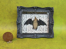 DH Miniature 1:12 Gothic, Haunted, Witch TAXIDERMY BAT in Frame ~ Halloween OOAK