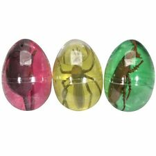 Plastic Insect Pest in an Egg Full of Slime - Fun Pocket Money Toy