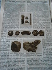 Thunderbolts Background to our Naturel History 1946 Print Article