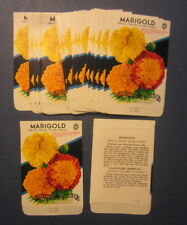 Wholesale Lot of 25 Old Vintage - MARIGOLD French Dwarf - Flower SEED PACKETS