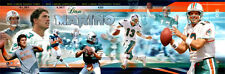Rare DAN MARINO Miami Dolphins Career Collage Premium PHOTORAMIC POSTER Print