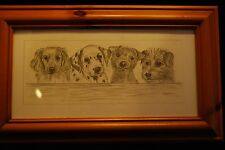 Steve O'Connell untitled picture of Four Dogs