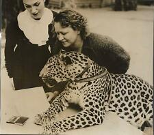 PHOTO PRESSE N.Y.T. ORIGINALE 1936 + LOS ANGELES + LEOPARD, empreintes digitales