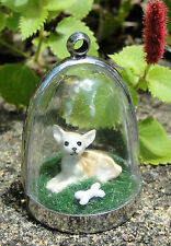 Chihuahua in repose! doggy diorama necklace pup puppy funky cute