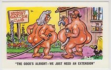 SAUCY POSTCARD - seaside comic, nude fat man woman BBW cock extension PEDRO #209