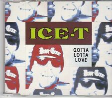 (EK567) Ice T, Gotta Lotta Love - 1994 CD