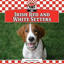 Irish Red and White Setters (Dogs)