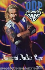 Diamond Dallas Page 22x34 DDP Poster 1998 WWE WWF WCW