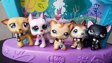Littlest Pet Shop Custom 5pc Necklace Tie Collar Accessories Cloths LPS Lot #65