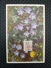 BELGIEN MK 1949 FLORA BLUMEN FLOWERS MAXIMUMKARTE CARTE MAXIMUM CARD MC CM a6726
