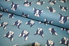 ECHINO KOKKA JAPON étoffe tissu design 0,5m CANVAS JEANS BOSTON TERRIER CHIENS c