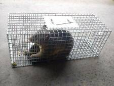 Solid Sturdy Frame Possum Trap / Cage, Rabbit, Cat, Bird Humane Pest Trap - New