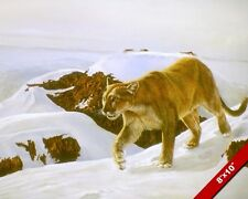 MOUNTAIN LION WILD CAT IN SNOW ANIMAL PAINTING WILDERNESS ART REAL CANVAS PRINT