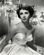 Elizabeth Taylor 8 x 10 GLOSSY Photo Picture