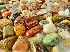 2 Lbs Tumbled Gemstones Flawed/Imperfect Crystals Discounted Mix Rocks Natural