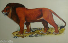 Asiatic lion Indian Animal Wild life Miniature Painting Handmade Forest Zoo ART