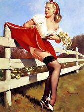 Don't Fence Me In - Pin-Up w. Skirt Stuck 8x10 Fabric Block - Buy 2, Get 1 FREE!