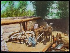 HAND COLOURED Glass Magic Lantern Slide IRRIGATION SYSTEM C1900 EGYPT