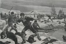 1881 Large Antique Print- Hunting and Killing Seal in the Arctic Regions -