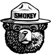"""Smokey Bear Bumper Sticker Forest Fire Fighter Car Decal 2.5"""""""