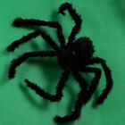 Halloween Prop Spider Indoor Outdoor Parties Bar Home DIY Decor Plush Spider