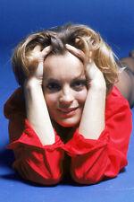 Romy Schneider 11x17 Mini Poster hands in hair studio shot