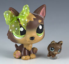 Littlest Pet Shop German Shepherd #2137 Brown w/Green Eyes + One Tiny Teensies