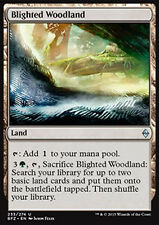 MTG 2x BLIGHTED WOODLAND - BOSCAGLIA MORENTE - BFZ - MAGIC
