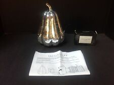 Pottery Barn Lit LED Silver Mercury Pumpkin Gourd New with Tag