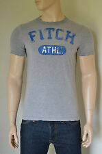 NEW Abercrombie & Fitch Iroquois Mountain Destroyed Grey Athletics Tee T-Shirt S