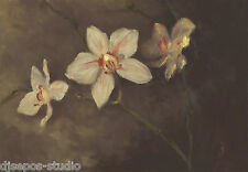 """Daily Painting a Day Sepos """"Orchid Beauties"""" still life Orchidaceae flower bloom"""