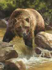 BEAR ART PRINT - Grizzly at Roaring Creek by Bonnie Marris 24x18 Wildlife Poster