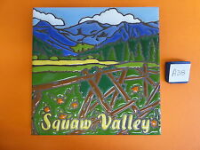 "Ceramic Art Tile 6""x6"" Sqaw Valley Spring time mountains and pine trees A38"